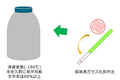 超急速ガラス化保存法(Vitrification)